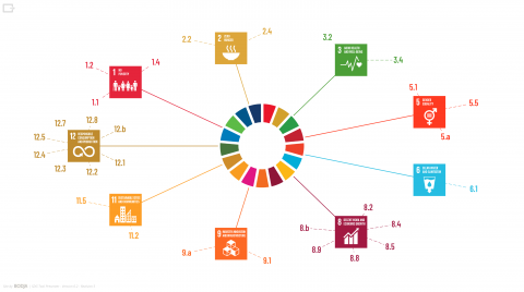 SDG tool infographic, which shows all the goals and all the targets that relate to a project once the questionnaire has been completed.