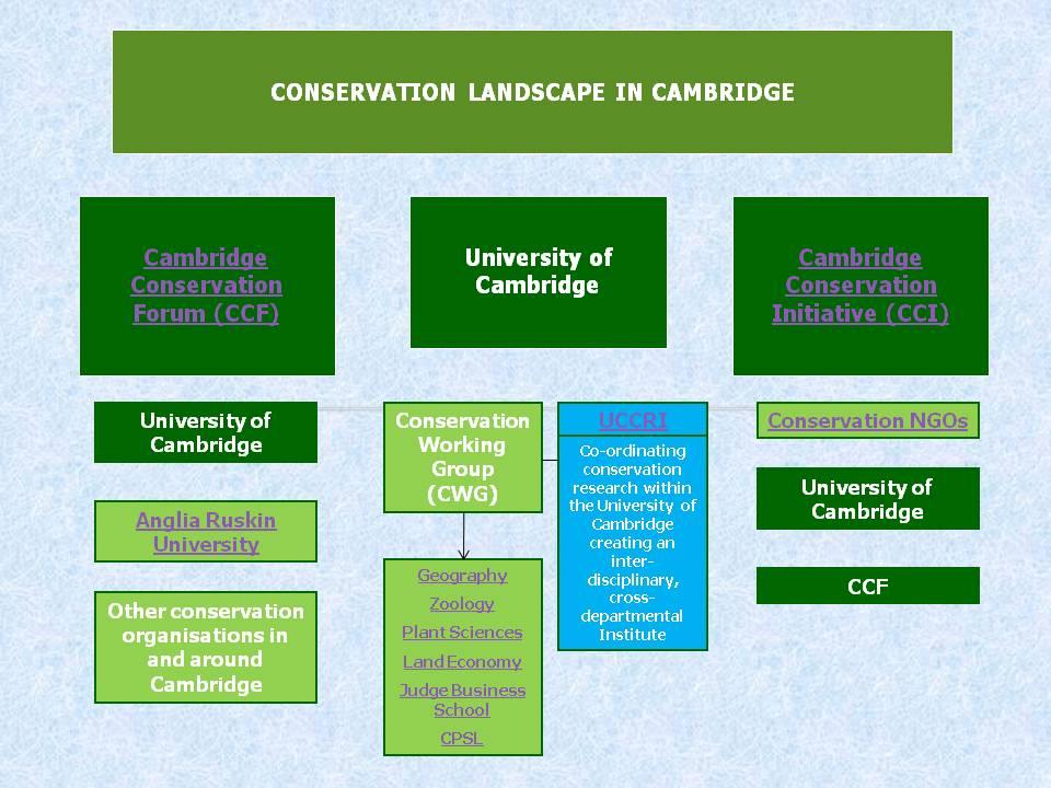 conservation landscape LATEST2.jpg
